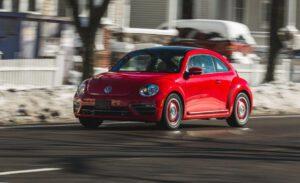 6 262.beetle new 300x183 - Beetle